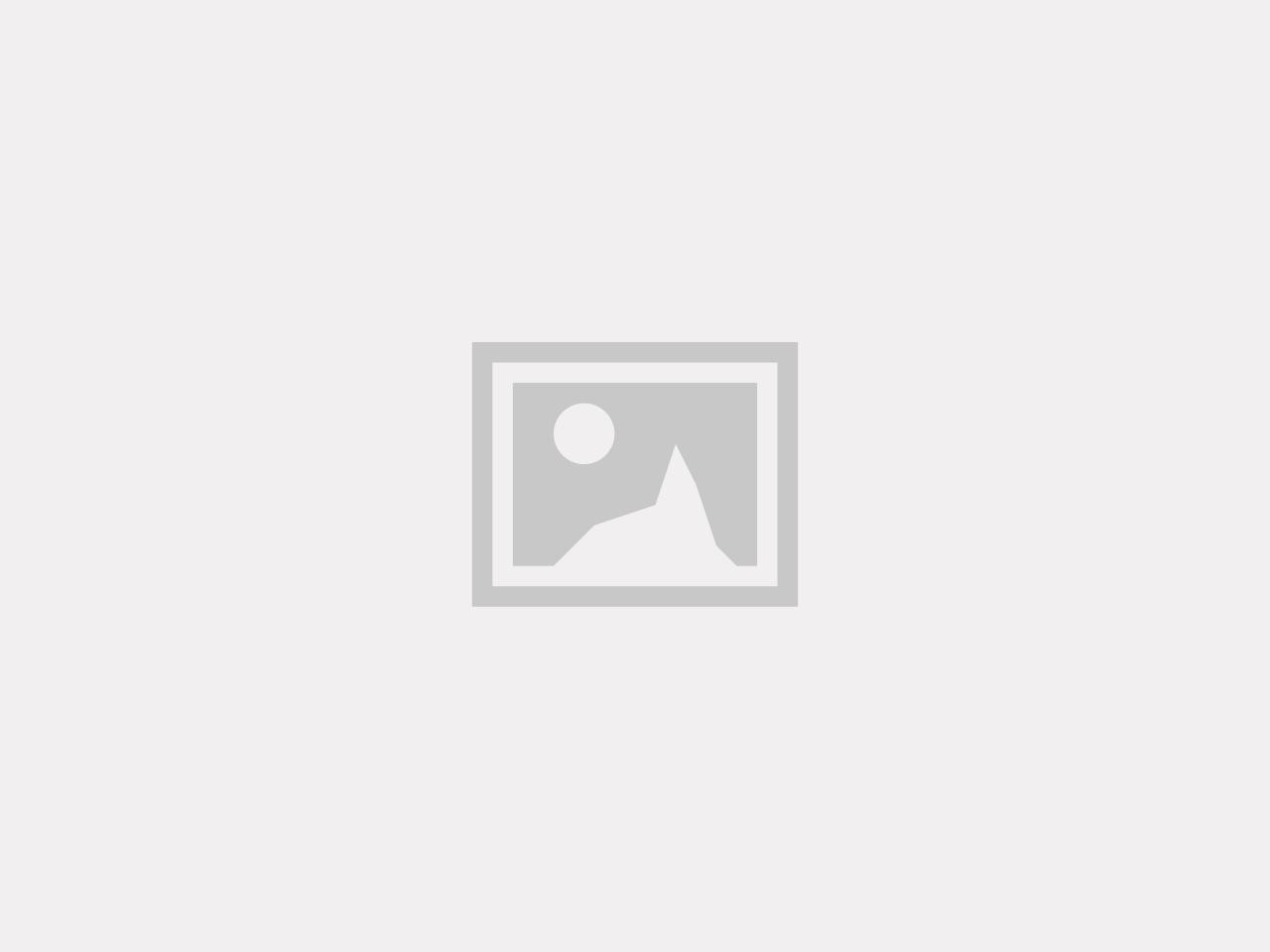 Grov ribb- Navi